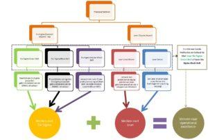 Lean-Six-Sigma-professionals-schematisch-weergegeven2